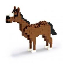 NBC-036 HORSE 美洲奎特馬