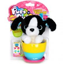 Pups in Surprise Cups Border Collie 茶杯裏的Puppy(邊境牧羊)